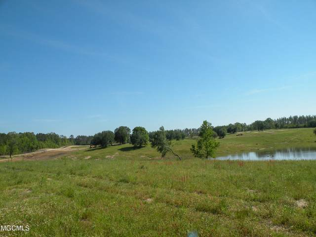 Lot 33 Gracies Way, Lucedale, MS 39452 (MLS #374192) :: Berkshire Hathaway HomeServices Shaw Properties