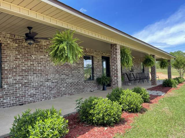 2218 Will Pet Rd, Lucedale, MS 39452 (MLS #374404) :: Coastal Realty Group