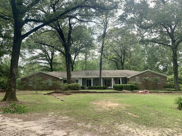 93 N Lake Rd, Wiggins, MS 39577 (MLS #374916) :: Coastal Realty Group