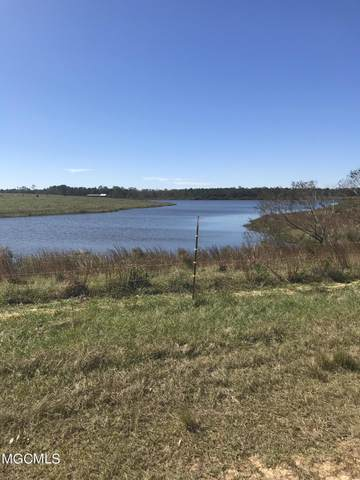 00 Hwy 53, Poplarville, MS 39470 (MLS #375055) :: Coastal Realty Group
