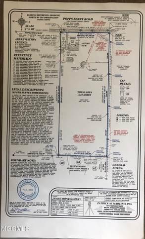 Address Not Published, Biloxi, MS 39532 (MLS #376457) :: Biloxi Coastal Homes