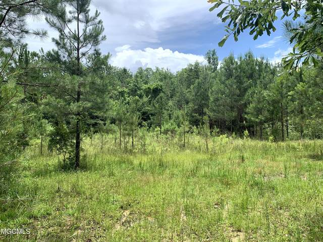 100 Acres Shaw Rd, Perkinston, MS 39573 (MLS #376659) :: Berkshire Hathaway HomeServices Shaw Properties