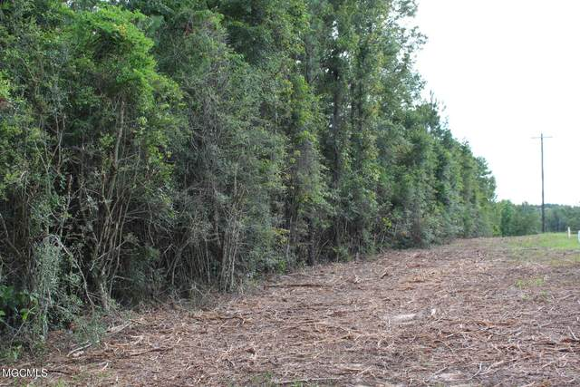 8.27 Acres E Mchenry Rd, Mchenry, MS 39561 (MLS #377383) :: Coastal Realty Group