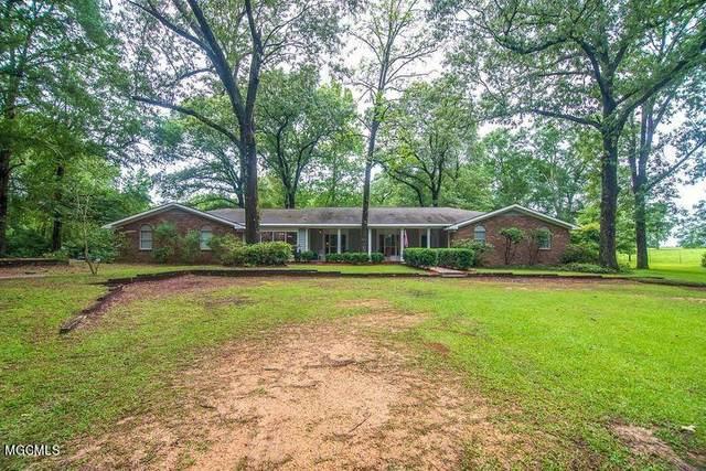 93 N Lake Rd, Wiggins, MS 39577 (MLS #378218) :: Dunbar Real Estate Inc.