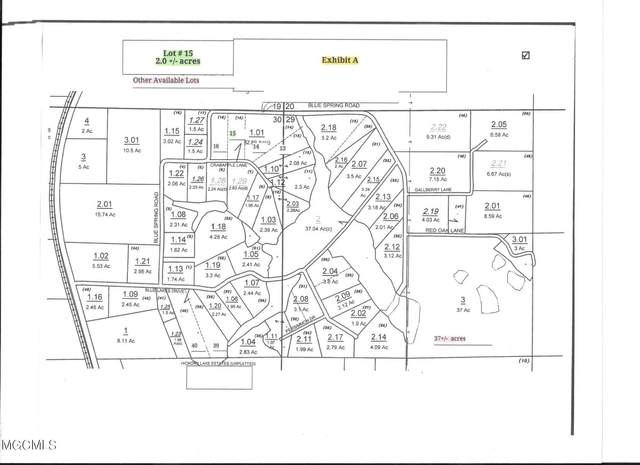Lot 15 Crabapple Ln, Lucedale, MS 39452 (MLS #378315) :: The Sherman Group
