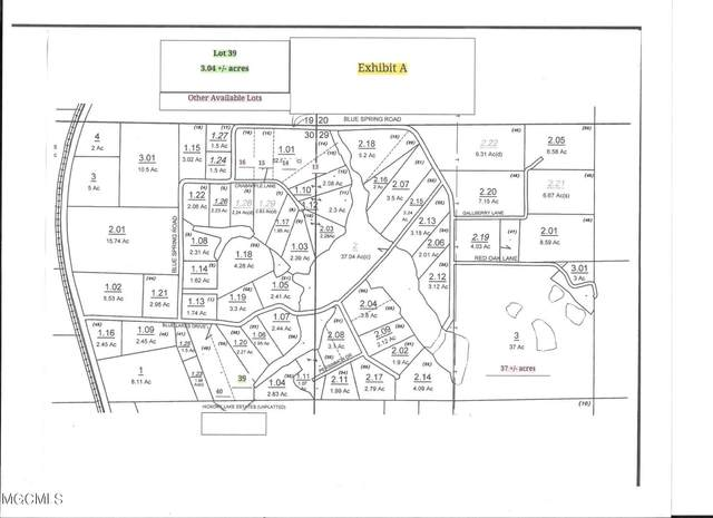 Lot 39 Blue Lakes Dr, Lucedale, MS 39452 (MLS #378317) :: The Sherman Group