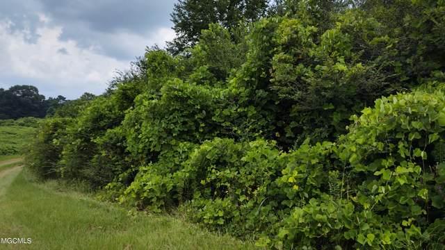0 Gentle Bend St, Lumberton, MS 39455 (MLS #378364) :: The Demoran Group at Keller Williams
