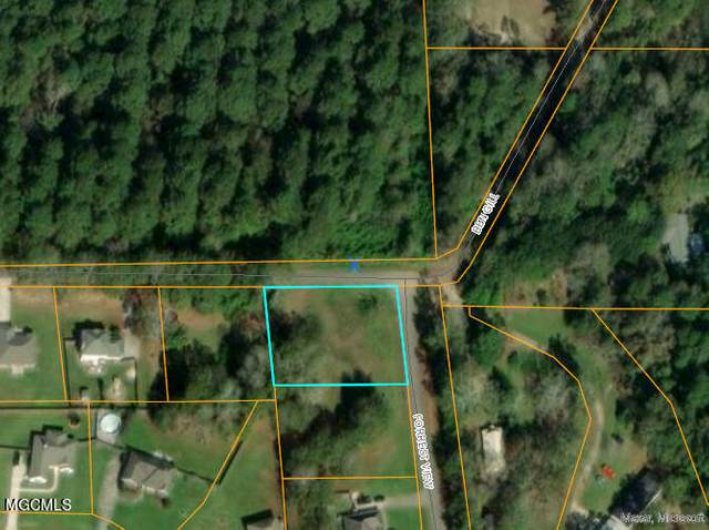 0 Forrest View Dr, Carriere, MS 39426 (MLS #379947) :: The Sherman Group