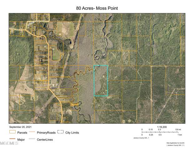 0 80 Acres, Moss Point, MS 39562 (MLS #380272) :: Berkshire Hathaway HomeServices Shaw Properties