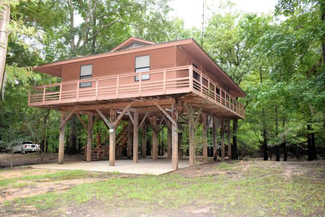 242 Beaver Dam Dr, Lucedale, MS 39452 (MLS #323452) :: Amanda & Associates at Coastal Realty Group