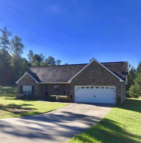 3 Ozark Pl, Perkinston, MS 39573 (MLS #332216) :: Amanda & Associates at Coastal Realty Group
