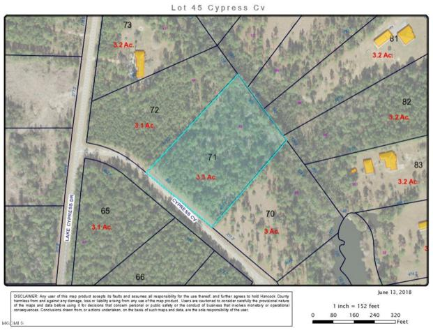 000 Cypress Cv Lot 45, Perkinston, MS 39573 (MLS #335496) :: Sherman/Phillips