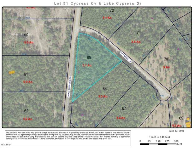 0 Cypress Cv Lot 51, Perkinston, MS 39573 (MLS #335498) :: Sherman/Phillips