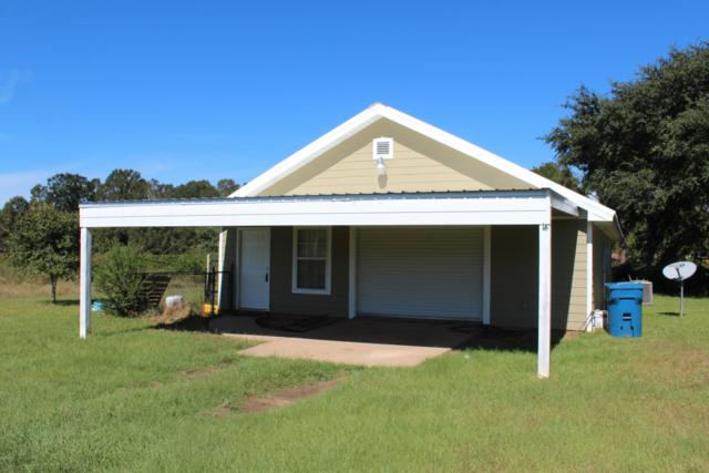85 Live Oak Ext, Lucedale, MS 39452 (MLS #340367) :: Amanda & Associates at Coastal Realty Group