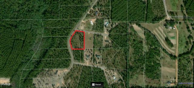 Lot 24 Sizemore Dr, Lucedale, MS 39452 (MLS #340977) :: Amanda & Associates at Coastal Realty Group