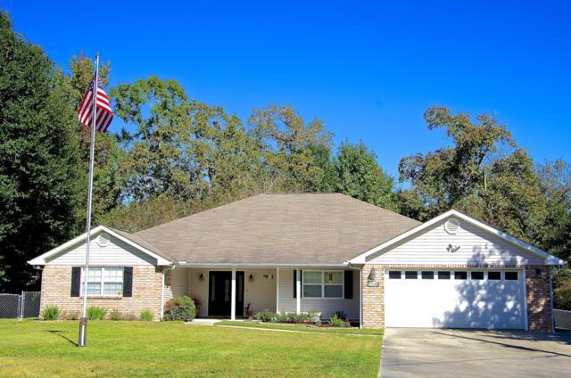 11220 N River Vue Cir, Biloxi, MS 39532 (MLS #341226) :: Sherman/Phillips
