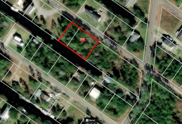 4097 Dolphin St, Bay St. Louis, MS 39520 (MLS #342494) :: Coastal Realty Group