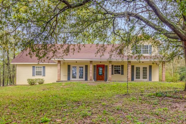4 Point View Dr, Carriere, MS 39426 (MLS #344770) :: Amanda & Associates at Coastal Realty Group