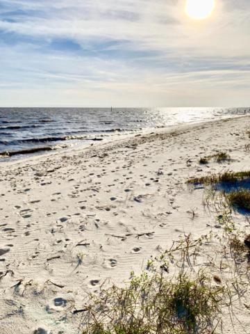 7413 Belle Fontaine Dr, Ocean Springs, MS 39564 (MLS #346267) :: Coastal Realty Group