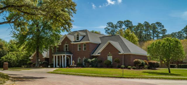 11571 Oak Pointe Dr, Gulfport, MS 39503 (MLS #346472) :: Coastal Realty Group