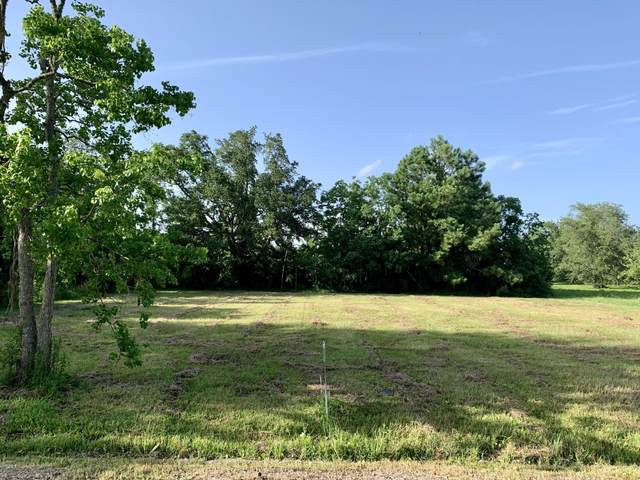 141 Fox Dr, Bay St. Louis, MS 39520 (MLS #351379) :: Coastal Realty Group