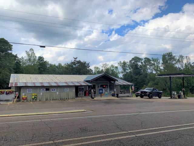 1125 Parkway Dr, Wiggins, MS 39577 (MLS #354053) :: Coastal Realty Group