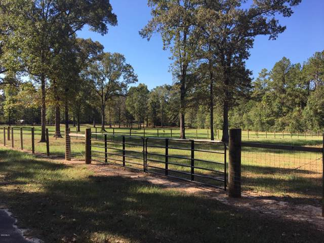 Tbd E Wire Rd, Perkinston, MS 39573 (MLS #354253) :: Coastal Realty Group