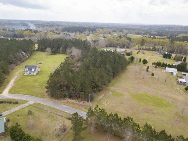 Lot 17 Presley Dr, Wiggins, MS 39577 (MLS #359480) :: Coastal Realty Group