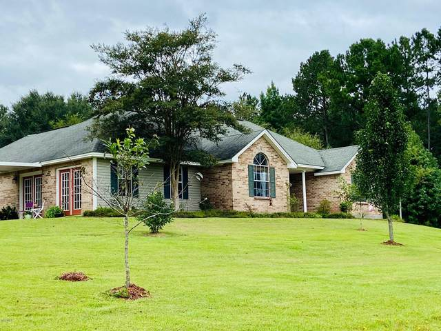 48 Covered Bridge Rd, Carriere, MS 39426 (MLS #362203) :: Coastal Realty Group