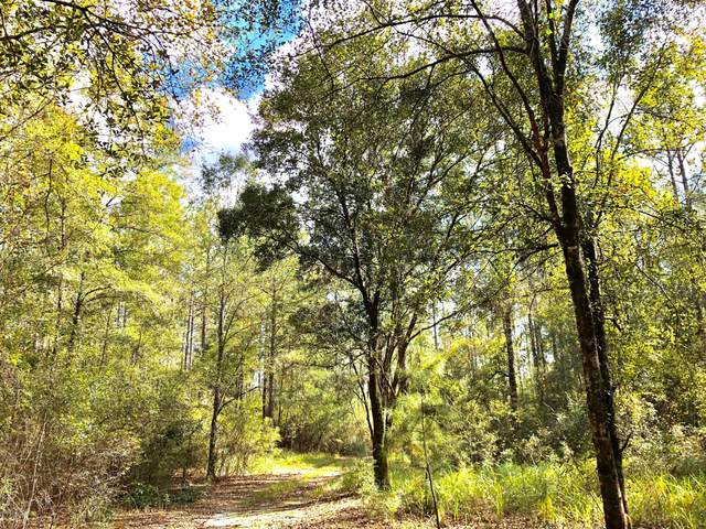 1 Mill Creek Ln, Lucedale, MS 39452 (MLS #368158) :: Exit Southern Realty