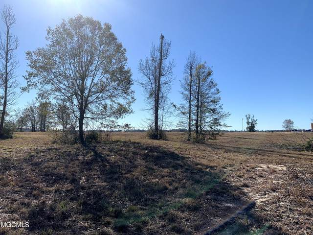 Lot 14 Wetzel Dr, Biloxi, MS 39532 (MLS #369583) :: Coastal Realty Group