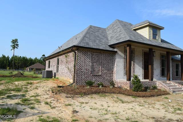 12201 East Pointe Dr, Picayune, MS 39466 (MLS #375130) :: The Sherman Group