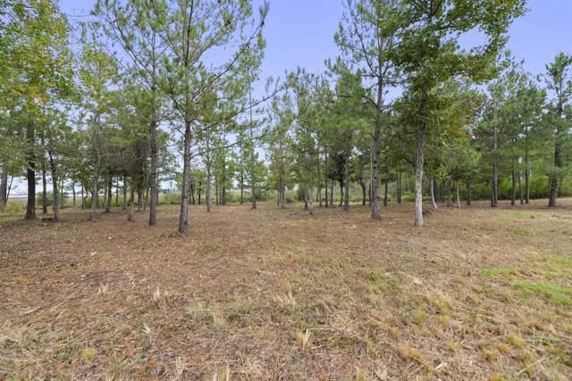 50 Destiny Plantation Blvd, Biloxi, MS 39532 (MLS #338521) :: Coastal Realty Group