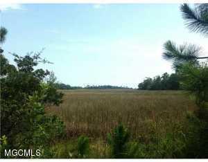 0 Iron Cv, Gautier, MS 39553 (MLS #324519) :: Ashley Endris, Rockin the MS Gulf Coast