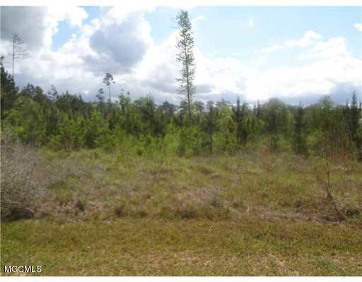 0 Pasture Rd, Perkinston, MS 39573 (MLS #325334) :: Amanda & Associates at Coastal Realty Group