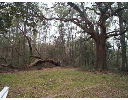 Lot 7 Mimosa Cv, Ocean Springs, MS 39564 (MLS #326131) :: Sherman/Phillips