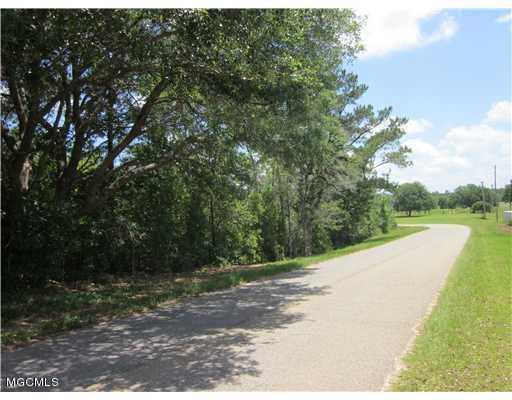 Lot 25 Lot 25 Aura/Lake Cross Dr, Gulfport, MS 39503 (MLS #330669) :: Sherman/Phillips