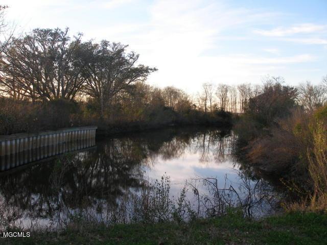 182 Blue Meadow Rd, Bay St. Louis, MS 39520 (MLS #331825) :: Ashley Endris, Rockin the MS Gulf Coast