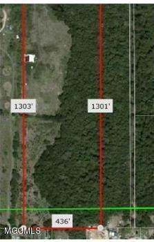 14867 N Swan Rd, Gulfport, MS 39503 (MLS #334387) :: Amanda & Associates at Coastal Realty Group