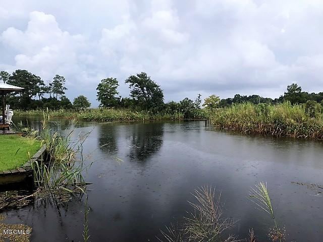 745 Susan Cir, Gautier, MS 39553 (MLS #337805) :: Amanda & Associates at Coastal Realty Group