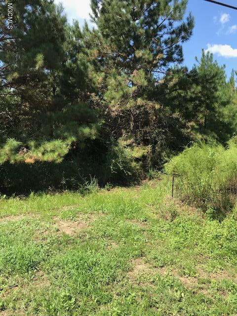None Carey Byrd Rd, Carriere, MS 39426 (MLS #338822) :: Sherman/Phillips