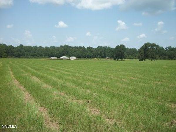 1767 Dupont-Harts Chapel Rd, Poplarville, MS 39470 (MLS #338887) :: Amanda & Associates at Coastal Realty Group