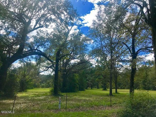 0 Branch Rd, Moss Point, MS 39562 (MLS #341246) :: Sherman/Phillips