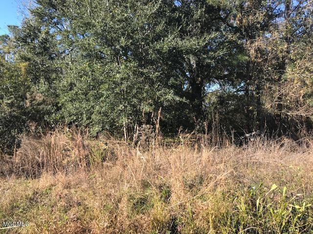 389 Clarence Ave, Pass Christian, MS 39571 (MLS #342767) :: Sherman/Phillips