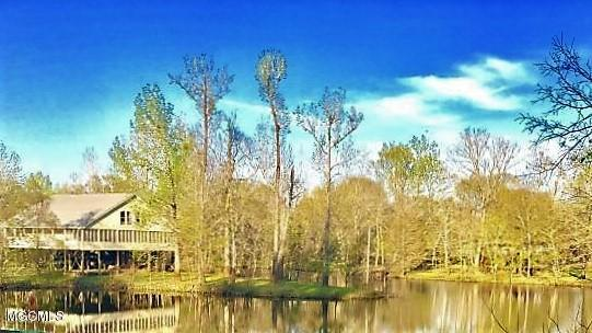 134 Mayhall Dr, Lucedale, MS 39452 (MLS #345348) :: Coastal Realty Group