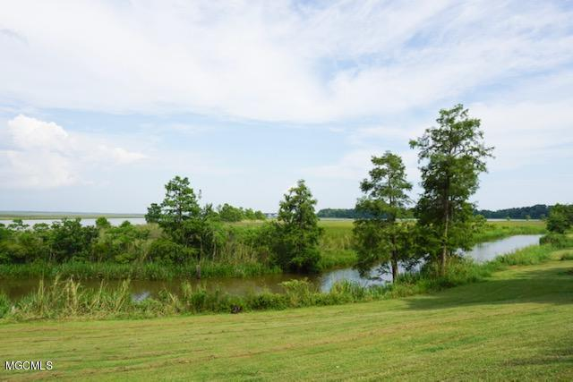 23 Acres Stanfield Point Rd, Gautier, MS 39553 (MLS #349730) :: Keller Williams MS Gulf Coast