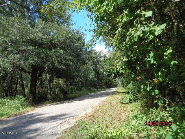 7166 Lee Haven Rd, Pass Christian, MS 39571 (MLS #354405) :: Coastal Realty Group