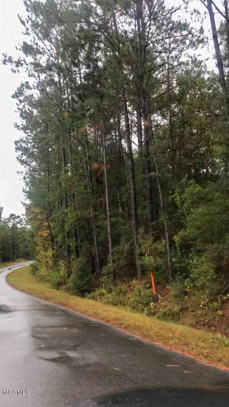 32ac Man Moulds Rd, Leakesville, MS 39451 (MLS #355164) :: Coastal Realty Group