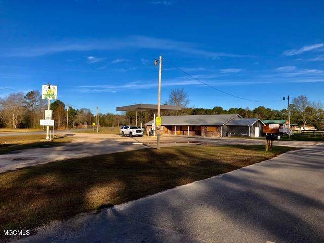 735 Henleyfield Mcneil Rd, Carriere, MS 39426 (MLS #357071) :: The Sherman Group