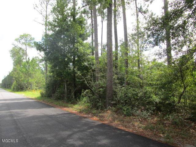 Nhn Roxanne St, Gautier, MS 39553 (MLS #366233) :: The Sherman Group